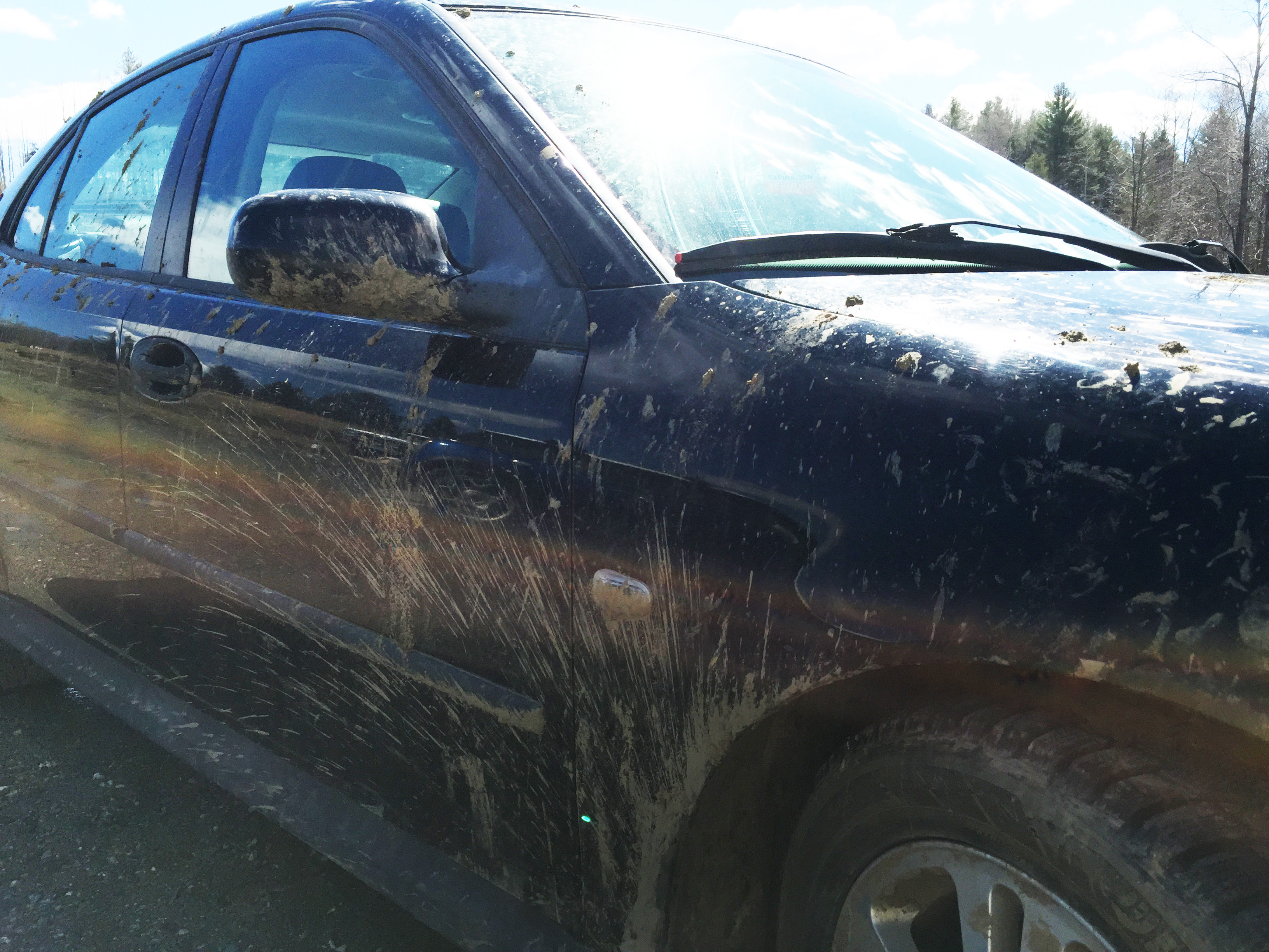 There's no point in washing my car during Vermont's Mud Month. This is just from going up the driveway and happens every day.